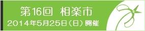 2014_ai16_ban