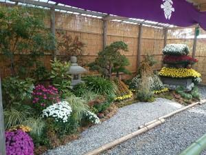 菊花展造園花壇2