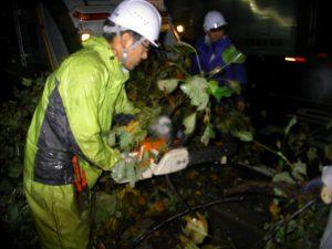 台風21号 東部 山手幹線倒木伐採作業中