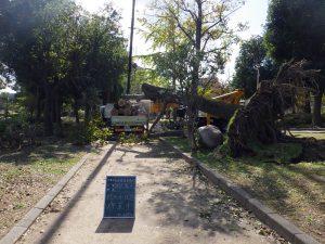 倒木撤去 妙法寺公園